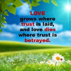 gratitude, trust and love