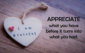 gratitude, appreciation